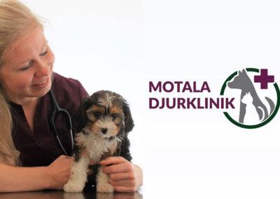 Bild med hund